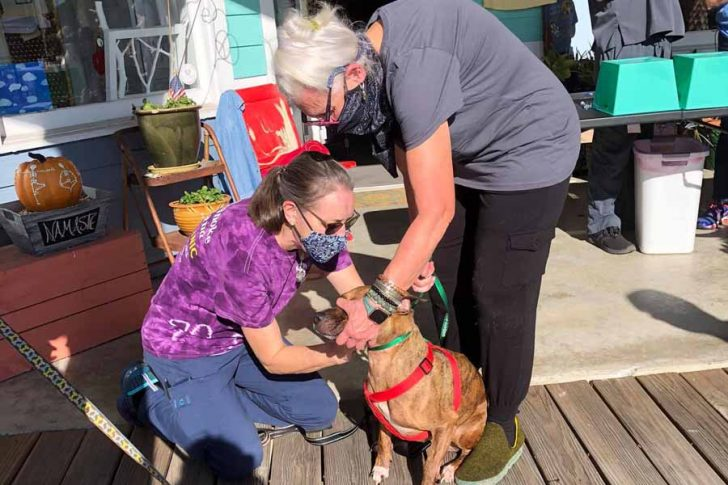 Coastal Humane Society's offers Vaccination Clinic for your pets